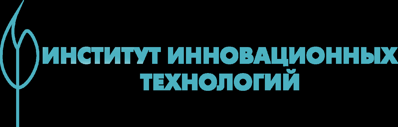 Институт инновационных технологий