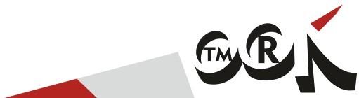 timurkuznetsov.ru бизнес практик