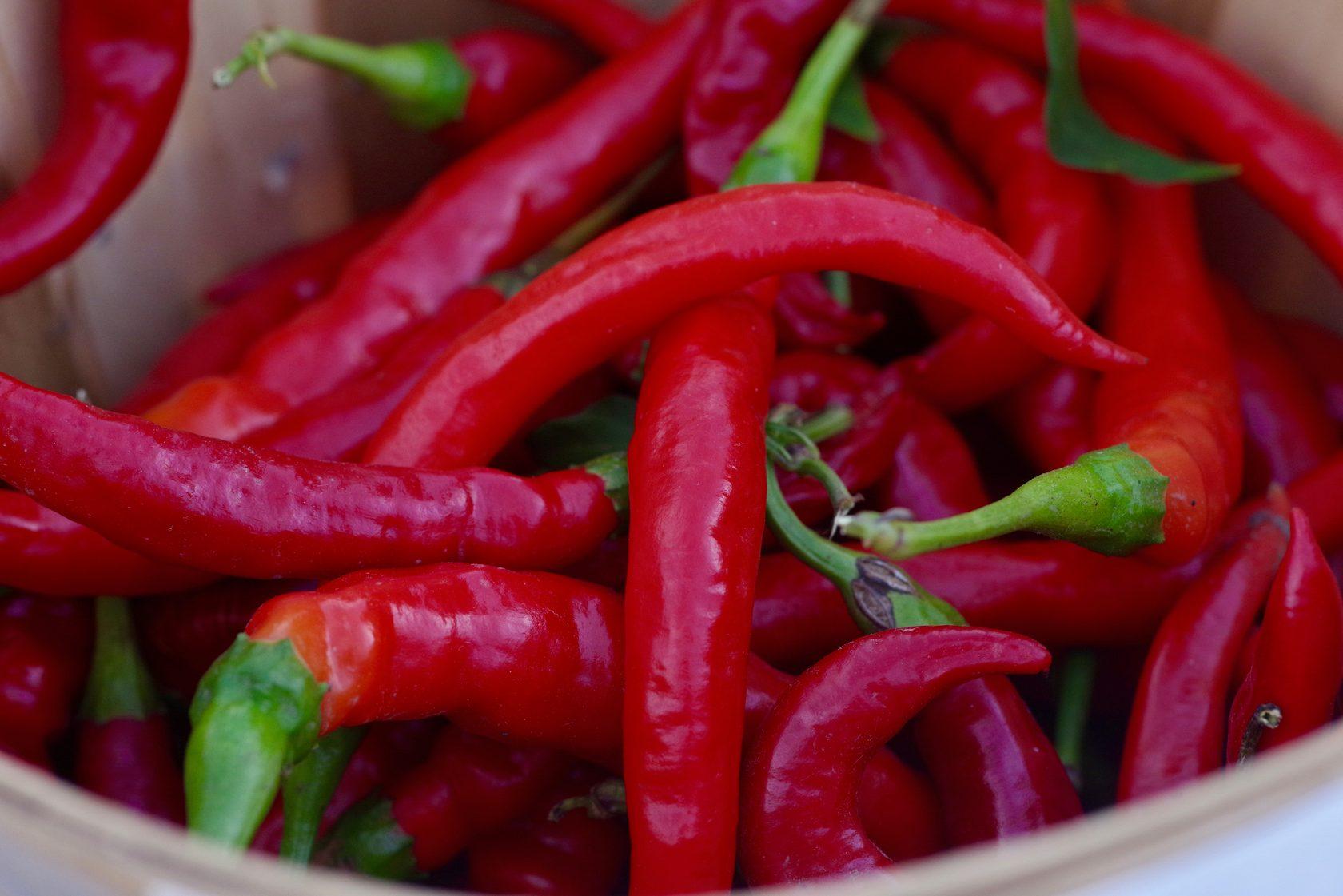 Top 5 Spicy Cuisines of Asia