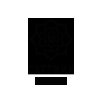 Вегетарианский ресторан Саттвик - партнер фестиваля INAYA