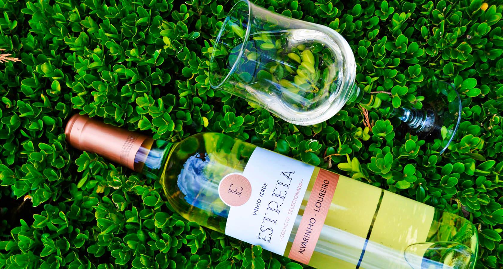 зеленое вино картинки общительная, быстро