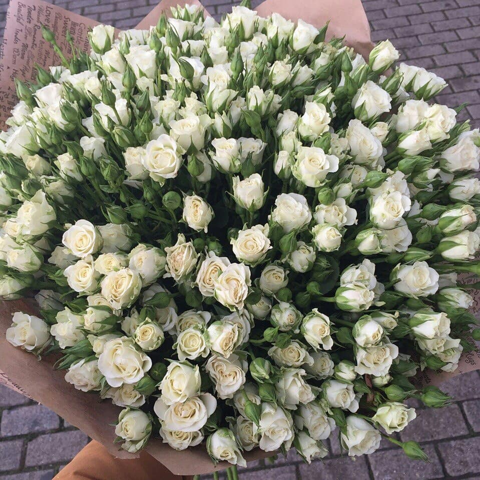 Цветы каталог с доставкой минске, цветов казани