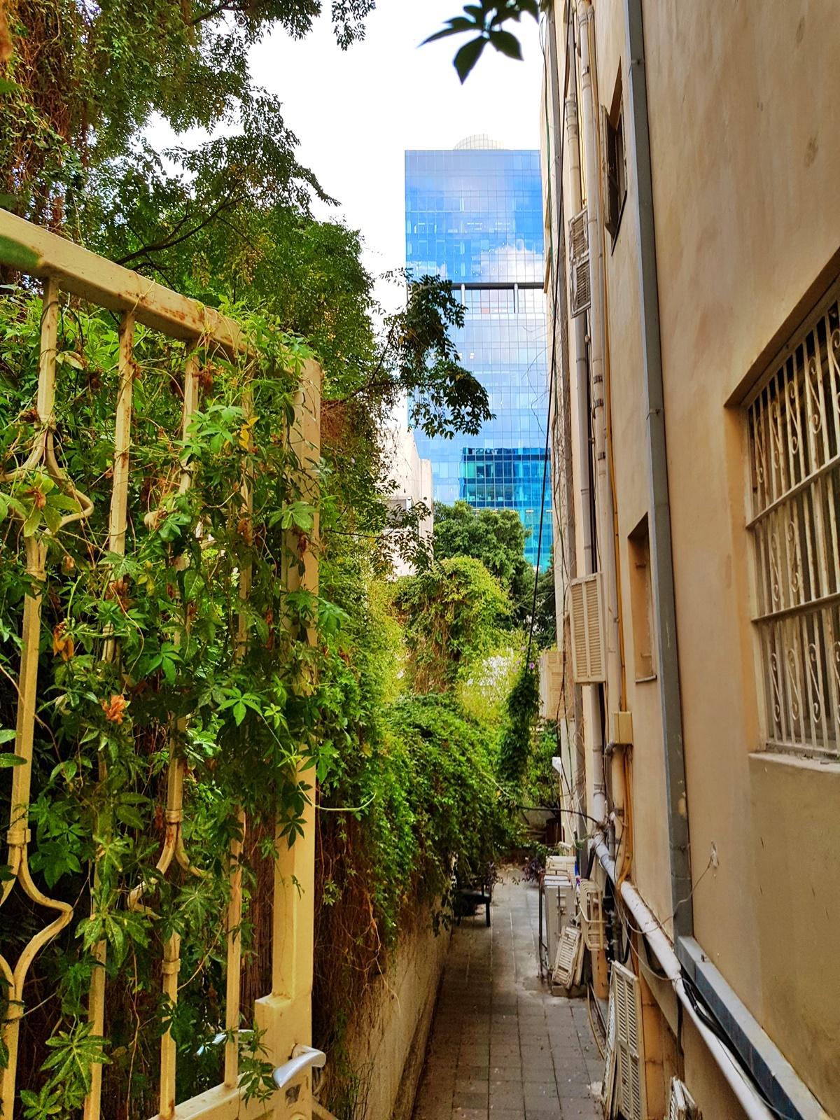 Белый город (Тель-Авив). Старое и новое.